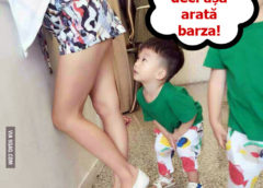 Cum Arata Barza